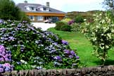 Bed and breakfast                         in sneem co kerry brookvilla