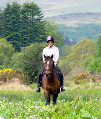 Horse Riding in kerry